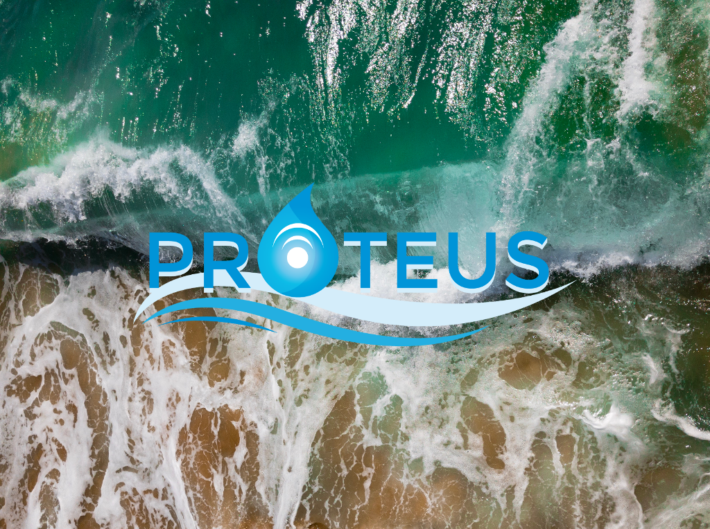 proteus_flash_study_marine